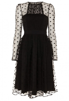 Robe Celia trouvée sur Temperley London